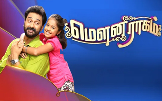 Mouna Raagam - Vijay Tv Serial