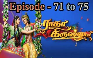 Radha Krishna - Vijay Tv Serial