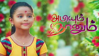 Abiyum Nanum - Sun TV Serial