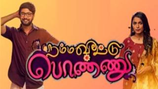 Namma Veetu Ponnu - Vijay Tv Serial
